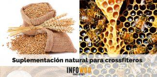 Suplementación natural para crossfiteros