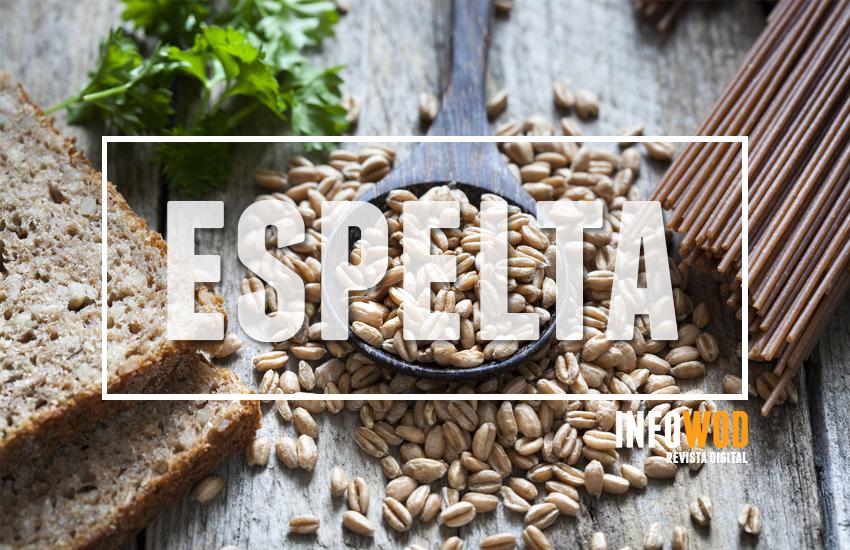 beneficios-espelta-trigo-cereal-infowod-superalimento