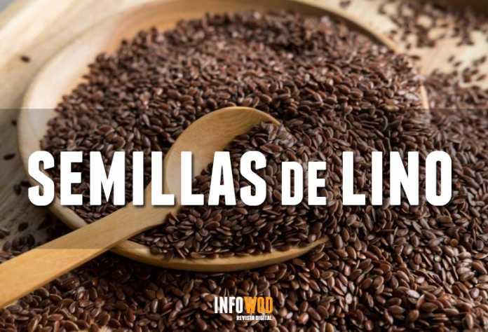 semillas de lino beneficios y propiedades